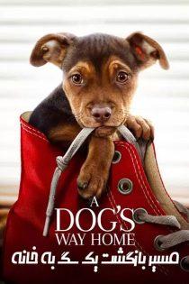 دانلود فیلم مسیر بازگشت یک سگ به خانه A Dog's Way Home 2019
