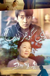 دانلود فیلم کره ای یک گوهر ناب A Diamond in the Rough 2019