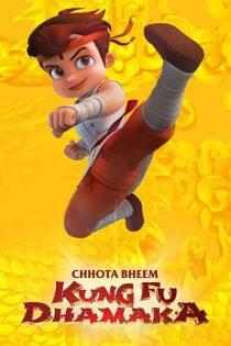 بیم کوچولو کونگ فو کار Chhota Bheem Kung Fu Dhamaka 2019