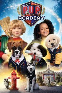 دانلود سریال آموزشگاه توله سگ ها Pup Academy 2019-2020