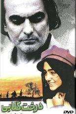 دانلود فیلم سینمایی درخت گلابی
