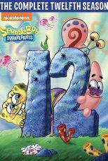 فصل دوازدهم انیمیشن باب اسفنجی Spongebob Squarepants Season 12
