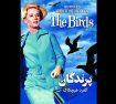 دانلود فیلم پرندگان The Birds 1963