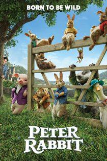 دانلود فیلم پیتر خرگوشه Peter Rabbit 2018