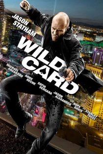 دانلود فیلم ضربه وایلد Wild Card 2015