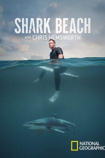 ساحل کوسه با کریس همسورث Shark Beach with Chris Hemsworth 2021