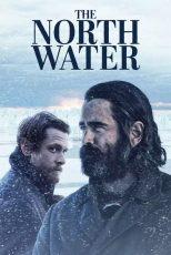 دانلود سریال آب های شمالی The North Water 2021