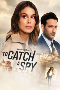 دانلود فیلم گرفتن یک جاسوس To Catch a Spy 2021